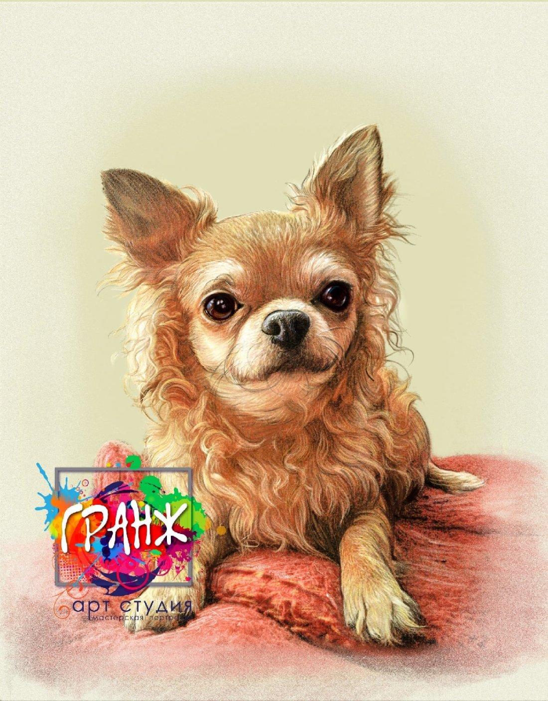 картина щенка
